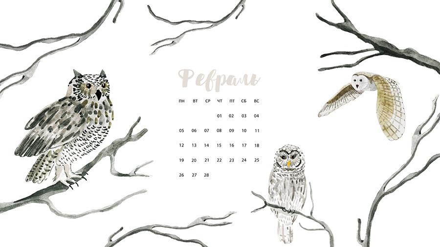 wallpaper-february-11