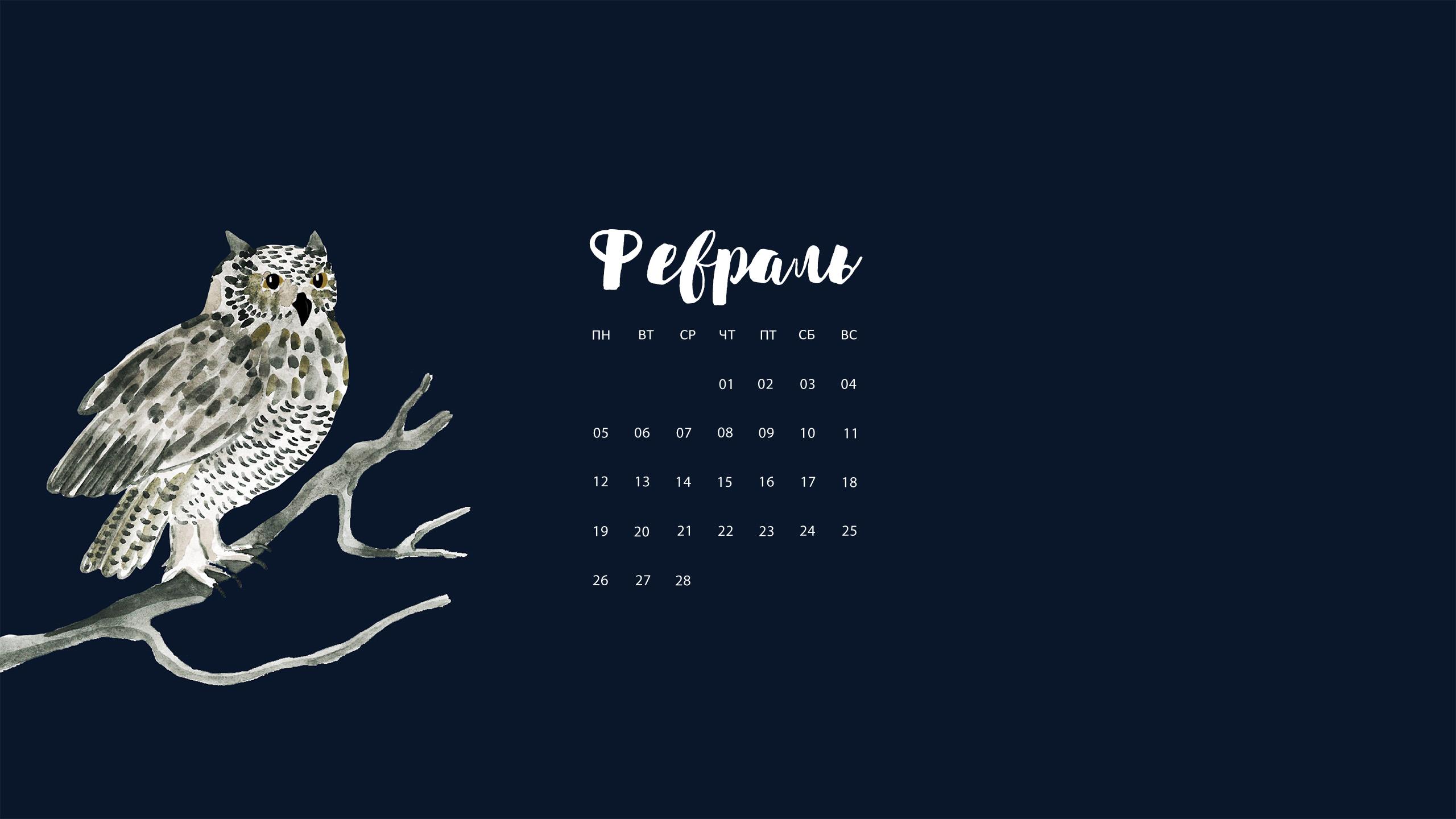 wallpaper-february-5